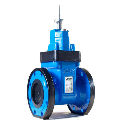 AEON Resilient Seated Gate Valve, Type B, Water