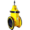 AEON Resilient Seated Gate Valve, Type B, Gas