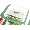 Convenience Food Trays