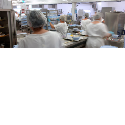 Catering & Commercial Kitchens