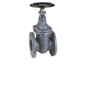 Cast iron and steel valves