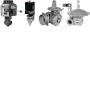 Combustion Valves