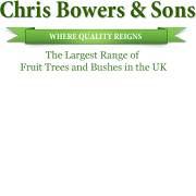 Chris Bowers and Sons