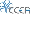 CCEA lights