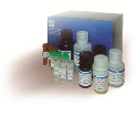 Assay Kits