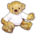 Personalised Fully Jointed Bear with T-Shirt