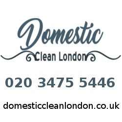 Domestic Clean London