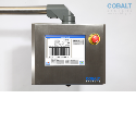 Cobalt Sentinel Verification